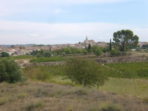 Ouveillan: Village Ouveillan in the vineyards - France-Voyage.com