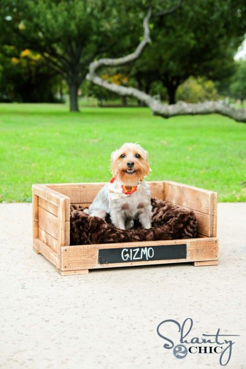 Cute idea! How to make a DIY Dog Bed