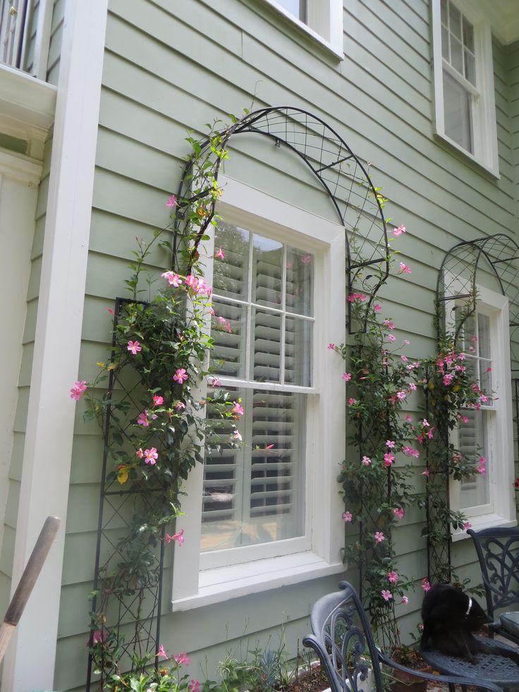 Designs Front Landscape House