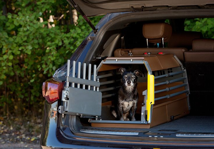MIM Variocage World's Safest Dog Transport Crate-MiniMax – Heavy Duty Pet Crates #petsafety #carrides #vacation #pettravel #smalldogs