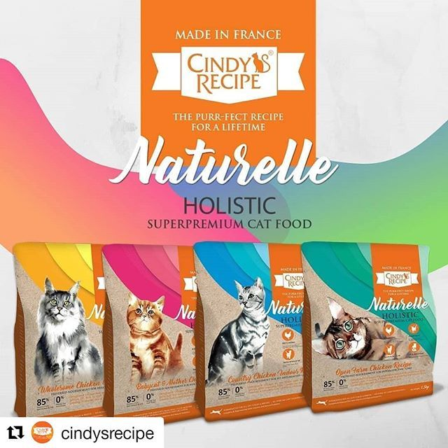 Available Now At Major Pet Stores Nationwide Repost Cindysrecipe Available Now At Major Pet Stores Nationwide Repost C Cat Food Animal Protein Cats