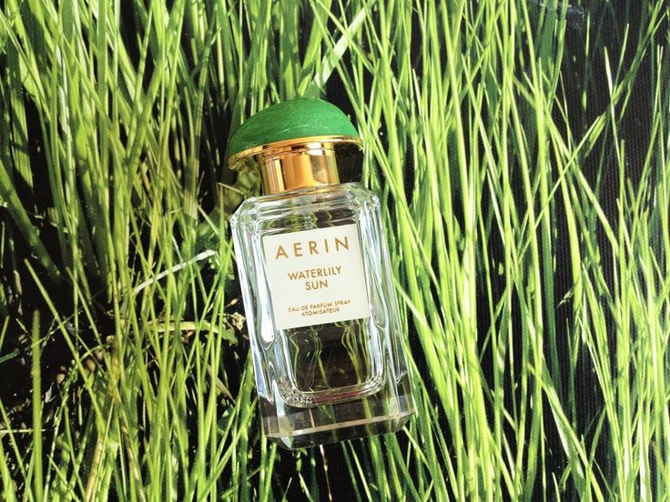 Review Aerin Waterlily Sun on http://cafecosmetique.com/parfumreview-aerin-waterlily-sun/