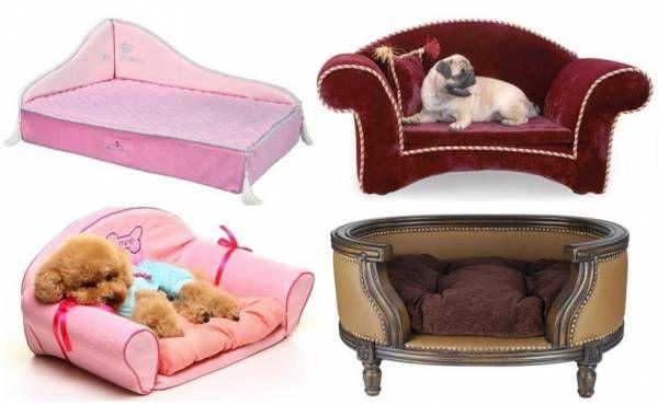 Лежаки для собак: нюансы выбора