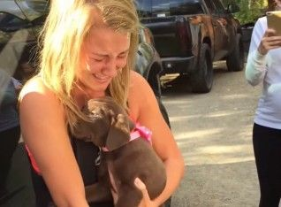 Romantis! Pria Ini Lamar Wanita Pujaannya dengan Memberikan Seekor Anak Anjing yang Lucu