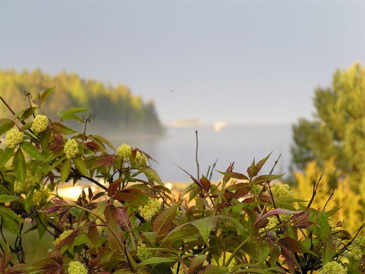 Vålnäsberget i Trödje