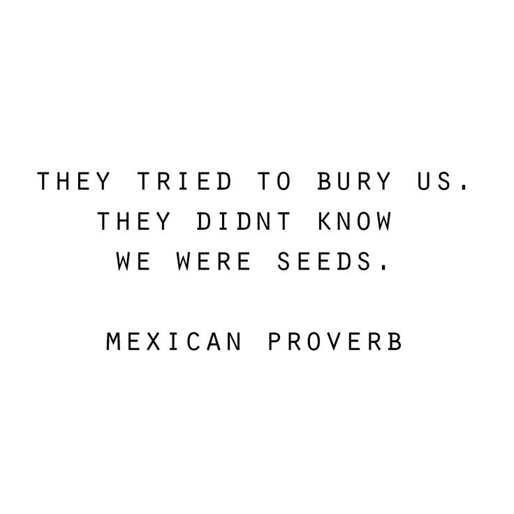 // they tried to bury us. they didnt know we were seeds. mexican proverb. #quotes #wisdom #inspiration