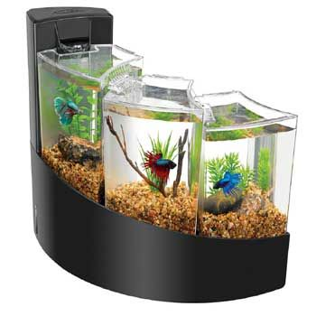 Aqueon Betta Falls Aquarium Kit: This is beautiful, but each compartment is too small/cold, and the current is too strong for bettas, but you could use this as a stunning waterfall planter, just leave the lids off. For bettas, better to get a larger betta tank or choose a different pet. Remember, bettas need a 2+ gallon tank (per betta) and a heater. Go here for some alternative housing ideas: http://www.pinterest.com/familyshopping0/fish-great-betta-tanks/