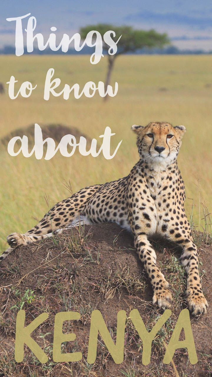 All you need to know about traveling around Kenya in East Africa.