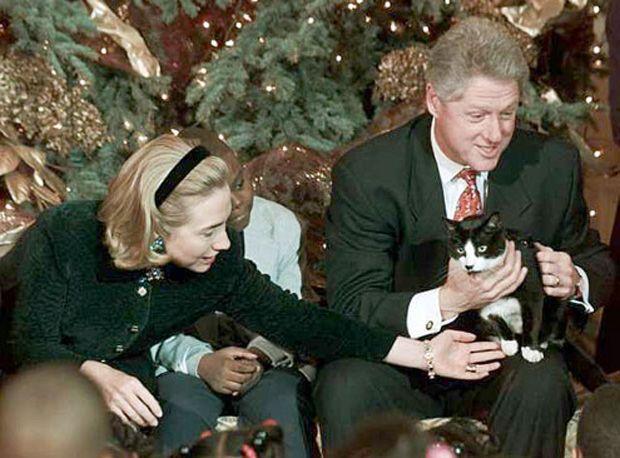 Día Internacional del Gato, llamado así por la mascota de los Clinton  http://www.quien.com/espectaculos/2015/02/20/dia-internacional-del-gato-llamado-asi-por-la-mascota-de-los-clinton