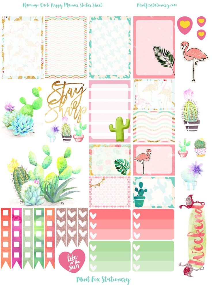 Flamingo Cacti Happy Planner Sticker Sheet at Mint Fox Stationary