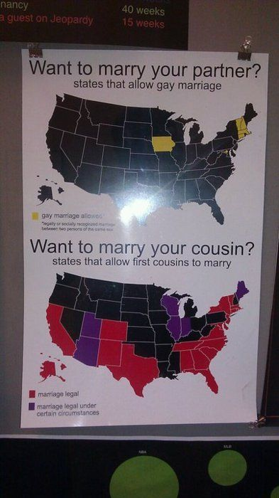 WTF - Well this explains a lot. USA.: Gay Marriage, 50 States, Food For Thoughts, America, Equality Rights, Funny, Now, Cousins, U.S. States