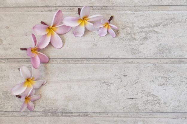 Vista de cima da superfície com flores fantásticas em um canto Foto gratuita