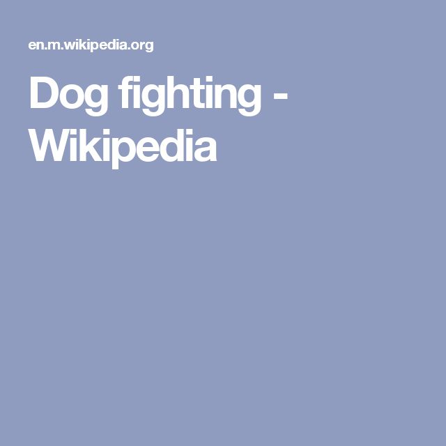 Dog fighting - Wikipedia