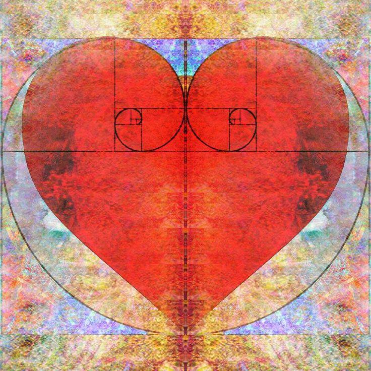 144 best Fibonacci Spiral images on Pinterest   Fibonacci ...