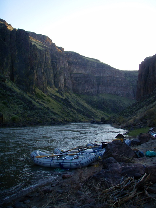225 best images about fly fishing fun on pinterest the for Owyhee river fly fishing