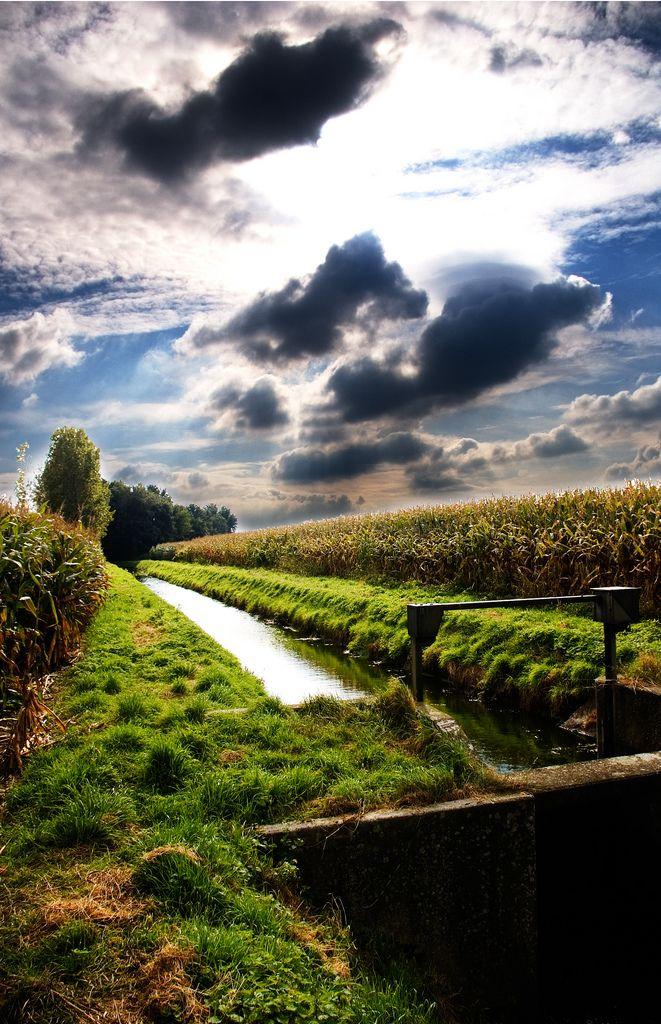Someren, Noord-Brabant.