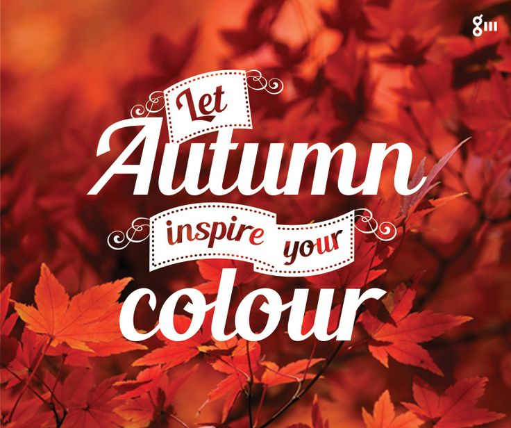 #Design – We love this time of year! Have you been tempted to change your ‪#‎hair‬ colour this season?