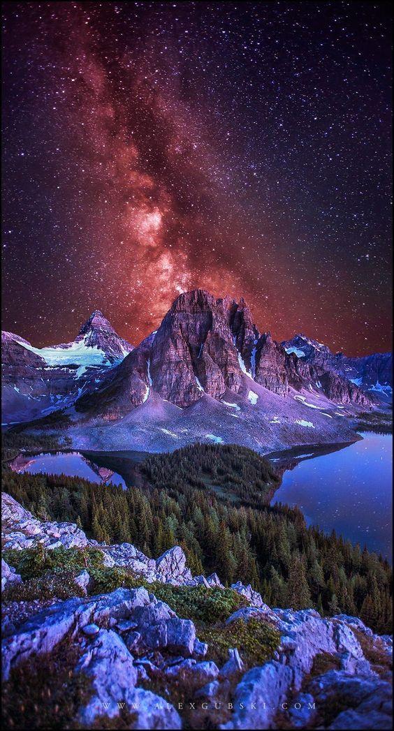 Stargazer by Alex Gubski on 500px