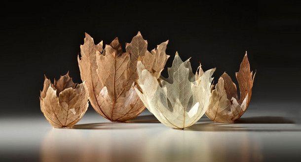 Prachtige schalen gemaakt van esdoorn bladeren - EYEspired