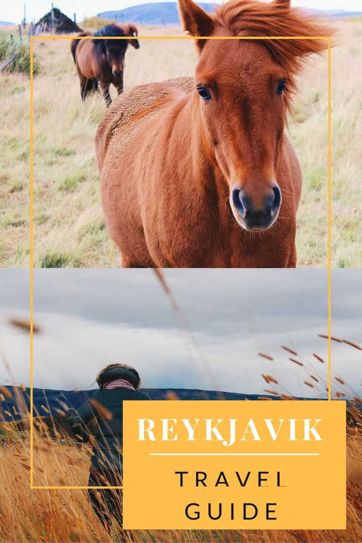 Reykjavik - Iceland Travel Guide www.anexpatdiary.com