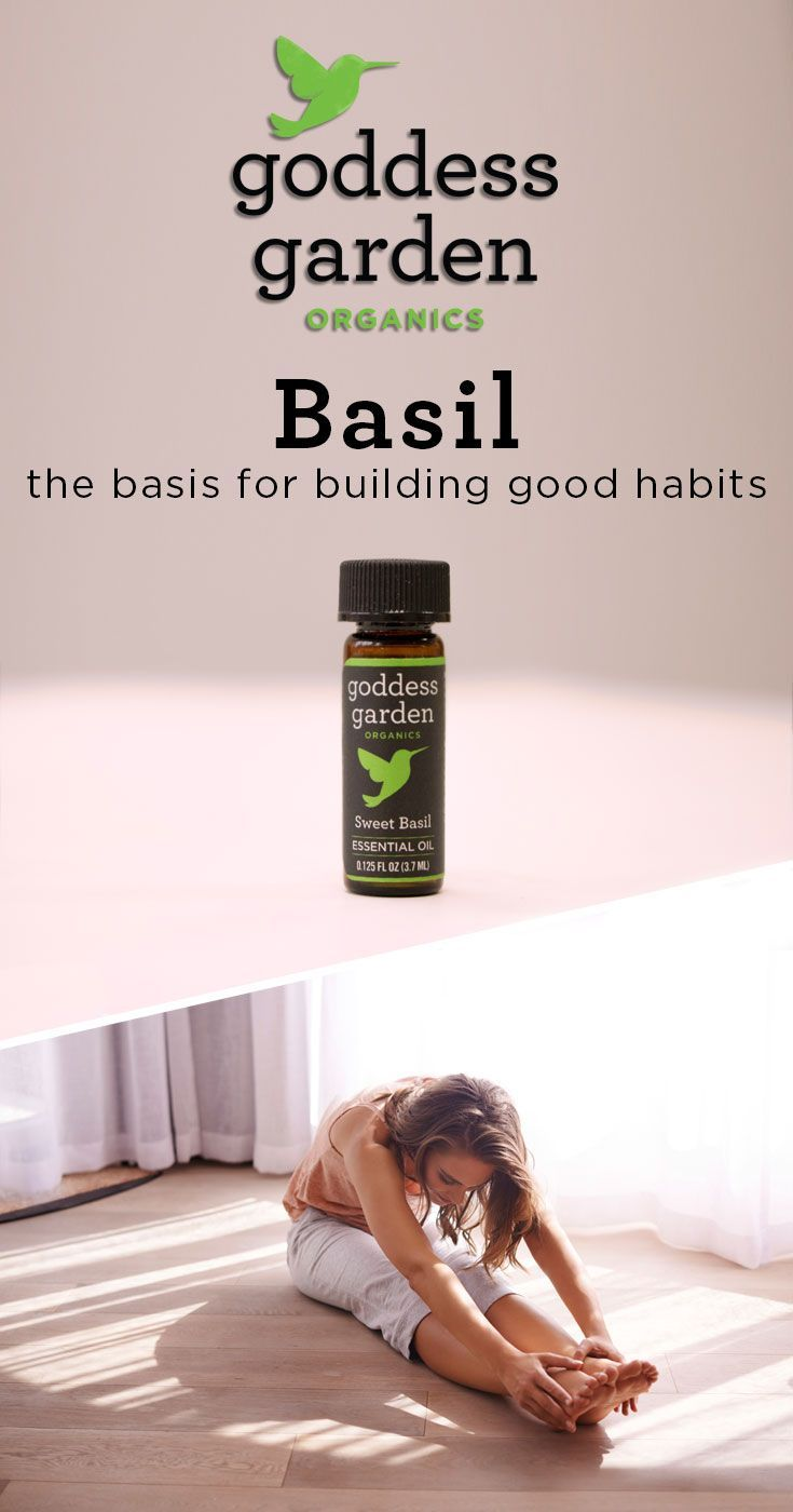 Basil The Basis For Building Good Habits Health And Wellness