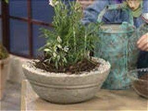 Making Cement Flower Pots