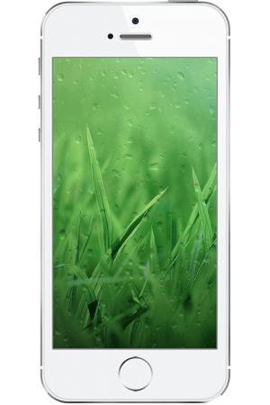 Grass Drops Wallpapers iphone