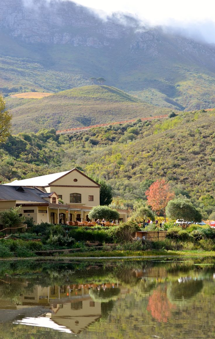 Postcard Cafe in Jonkershoek Valley - Stellenbosch - A perfect Sunday breakfast or lunch venue in the greenest Western Cape valley...clad in autumn colours. It is called Postcard Cafe because the views are like something on a postcard. The concise menu has something to suit all tastes. The hand-made desserts are worth saving space for....and they serve a Espressolab blend for coffee! Stark-Condé wine tasting on a beautiful island. http://www.postcardcafe.co.za/