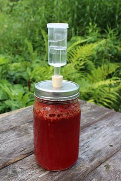 Every year I'm excited about fermenting up something tasty with raspberries. Raspberry wine, raspberry mead or even a light summery raspberry beer. Just one problem…raspberries are wicked expensive. Do you know how many raspberries it takes to make even a gallon of raspberry wine? For beer or mead, it takes about a quart in a...Read More