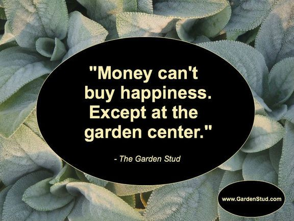 Best 25 Funny Garden Quotes Ideas On Pinterest Garden