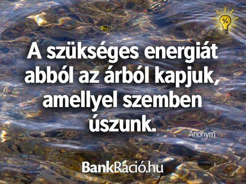 A szükséges energiát abból az árból kapjuk, amellyel szemben úszunk. - Anonym, www.bankracio.hu idézet