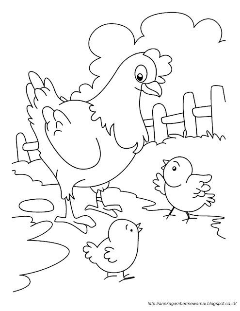 gambar mewarnai ayam 2 farm animal coloring pages