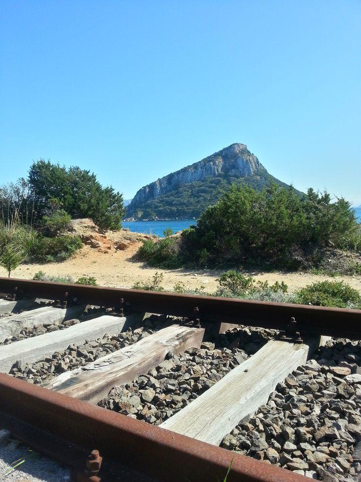 Uno scorcio di Figarolo dalla ferrovia di Cala Moresca - Golfo Aranci Escursioni fattibili http://betogo.eu/Dolphin-Watching-Sardegna
