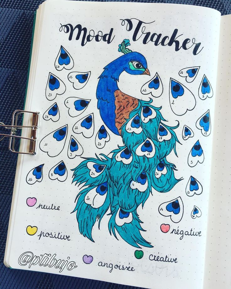 17 Tail-Shaking Peacock Inspired Bullet Journal Spreads | My Inner Creative