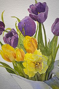 Judy Mudd - Work Zoom: Brighten My Day