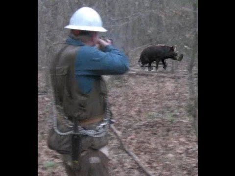 Ultimate Hog Hunting!  Wild Hog Hunting!  Wild Boar Hunting!  Hog Hunting - YouTube