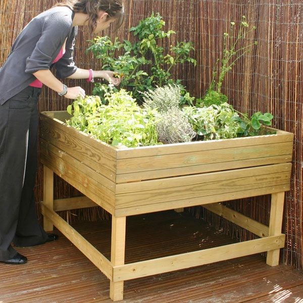 Wooden Raised Garden Bed so the dogs don't dig up the plants!!