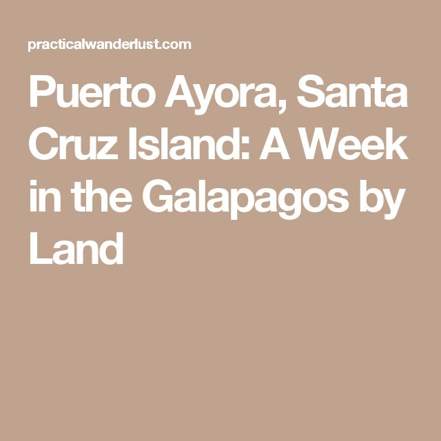 Puerto Ayora, Santa Cruz Island: A Week in the Galapagos by Land