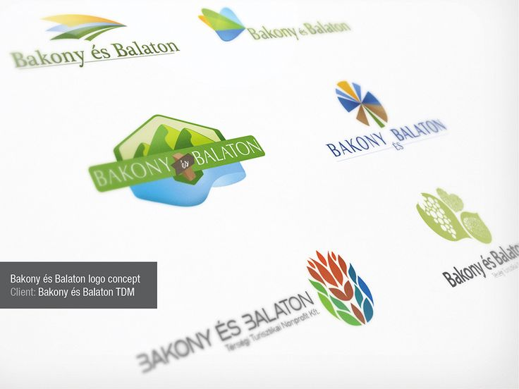 logo concepts for Balaton TDM