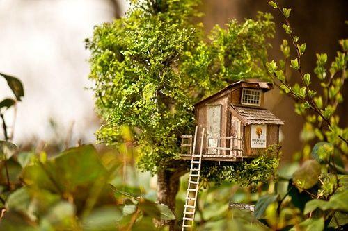 Miniature Trees For Fairy Gardens | Tree Houses and Fairy Gardens Travel Trailers / Treehouse Mini ...