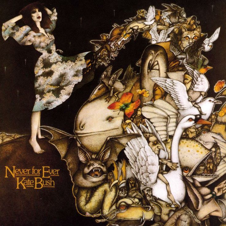 Kate Bush Never For Ever artwork, definitely one of my favourite album covers ever.