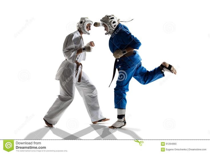 Kudo Karate Fighters Stock Photography - Image: 22205362