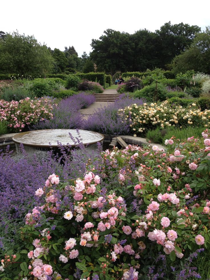 28 best penelope hobhouse images on pinterest english for Garden design yeovil
