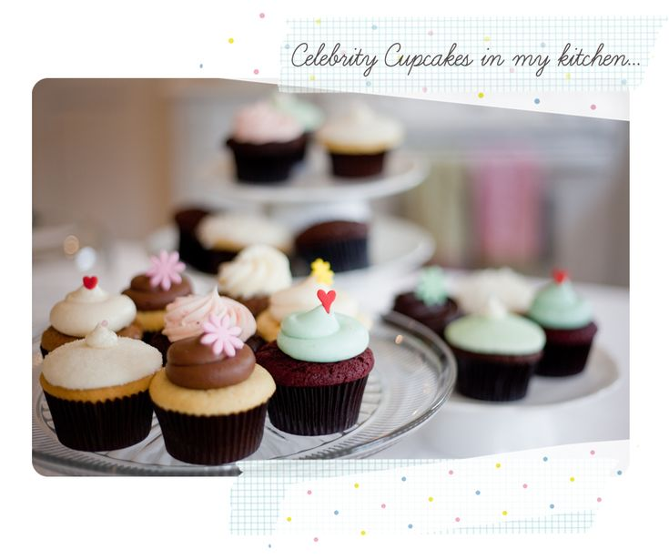 Celebrity Cupcakes: In red velvet, lemon raspberry and vanilla bean