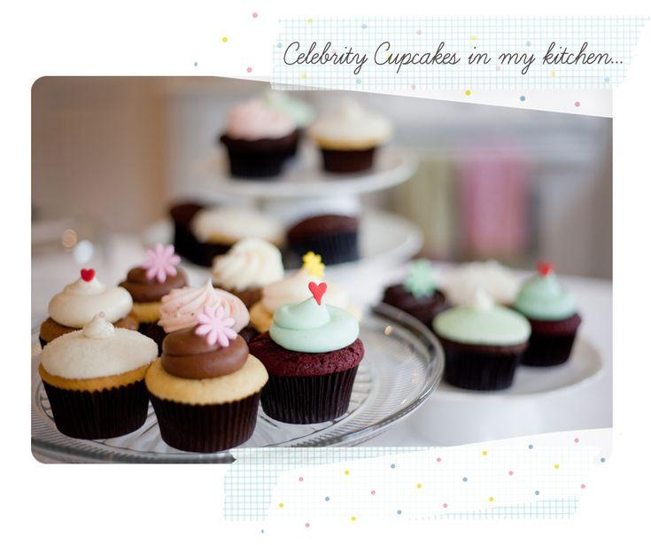 Celebrity Cupcakes: In red velvet, lemon raspberry and vanilla bean