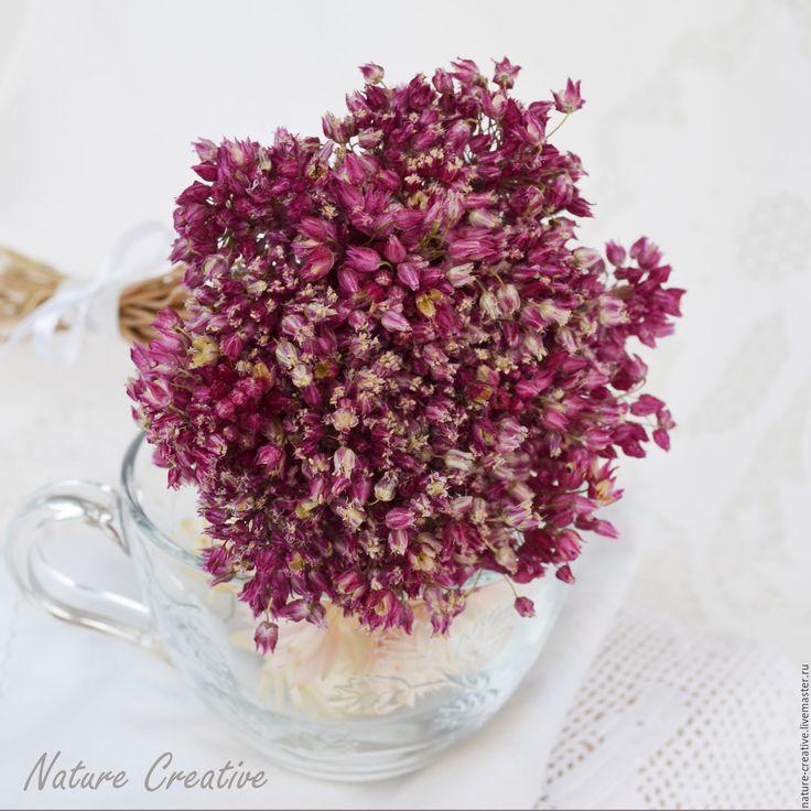 Купить Дикий лук сухоцвет букетик - сухоцветы, засушенные цветы, полевые цветы и травы, травы