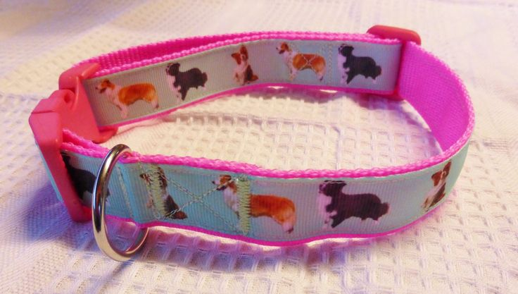 Border collie custom print ribbon collar on pink webbing $20