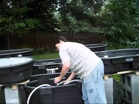 Aquaponics Pumps, Plumbing - How to plumb an Aquaponics system with drinking water hose.