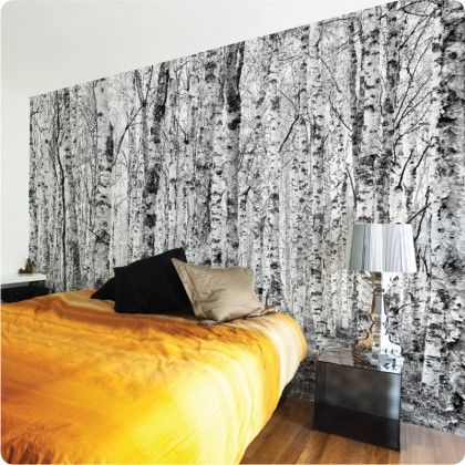 Birch forest removable wallpaper by the wall sticker company