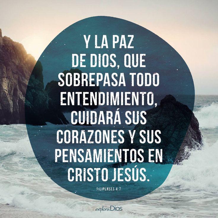 Y la paz de Dios, que sobrepasa todo entendimiento, cuidará sus corazones y sus pensamientos en Cristo Jesús. -Filipenses 4:7 - ExploraDios.com